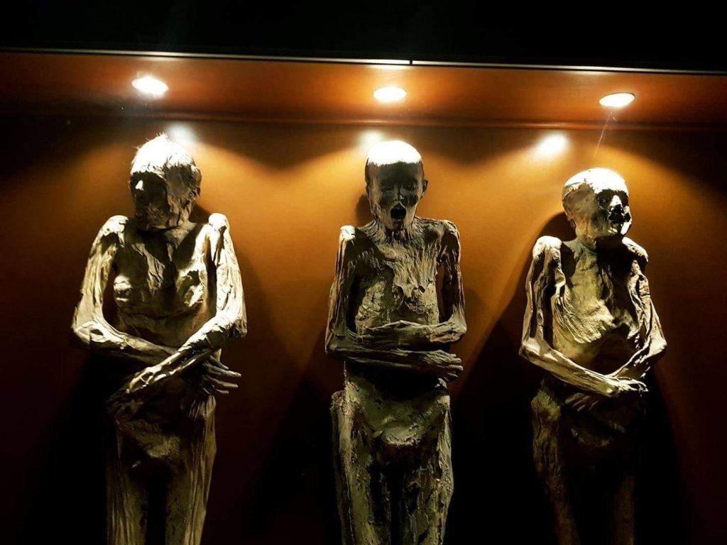 Museo de la momia